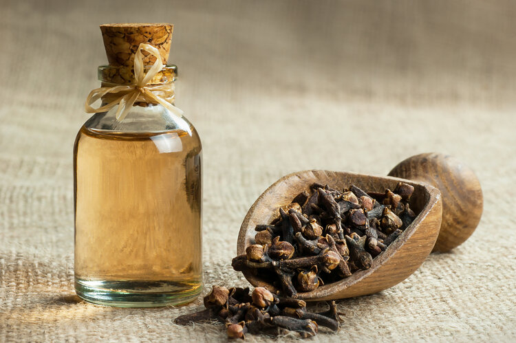 Close up glass bottle of clove oil and cloves in wooden shovel on burlap sack